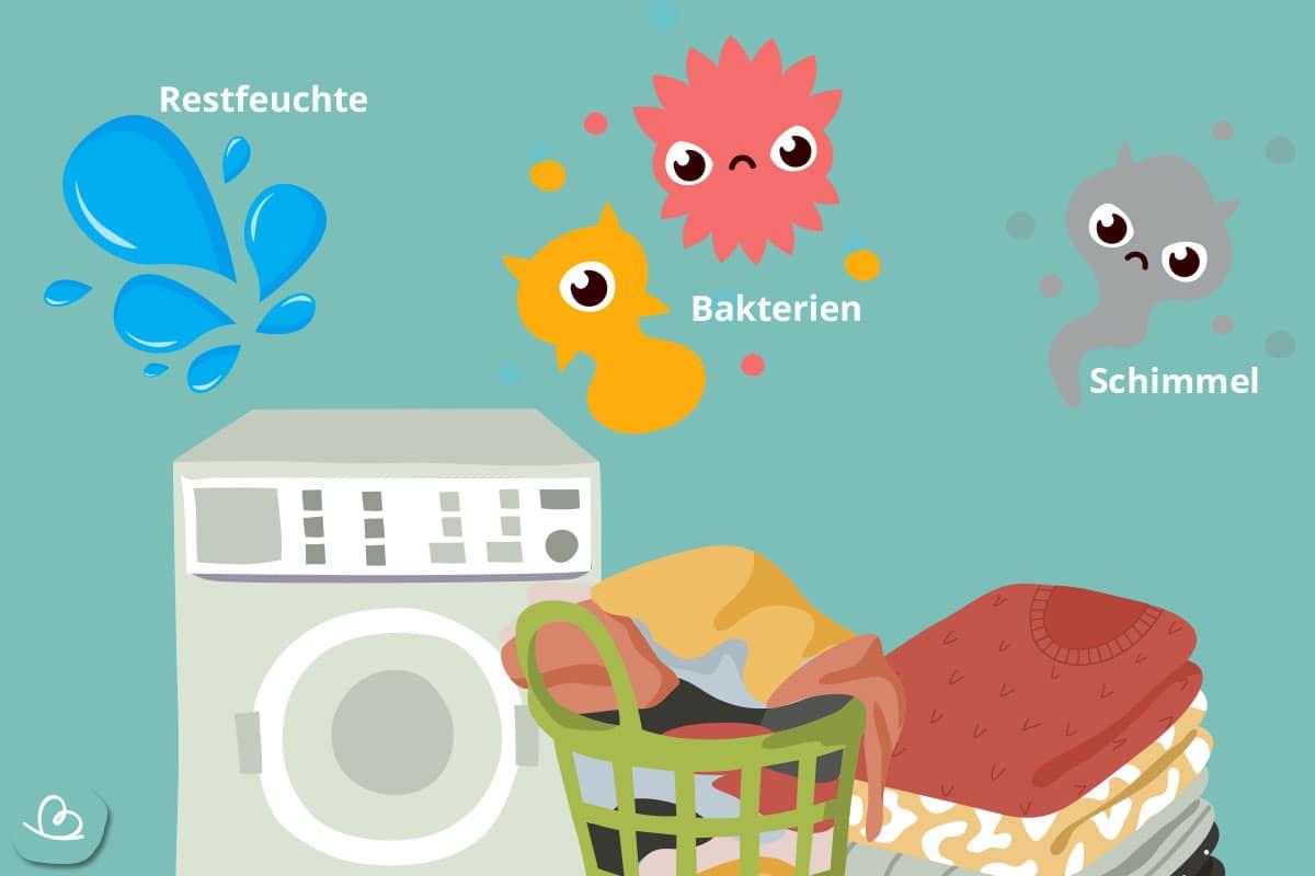 Ursachen für stinkende Wäsche-Schimmel-Bakterien-Restfeuchte