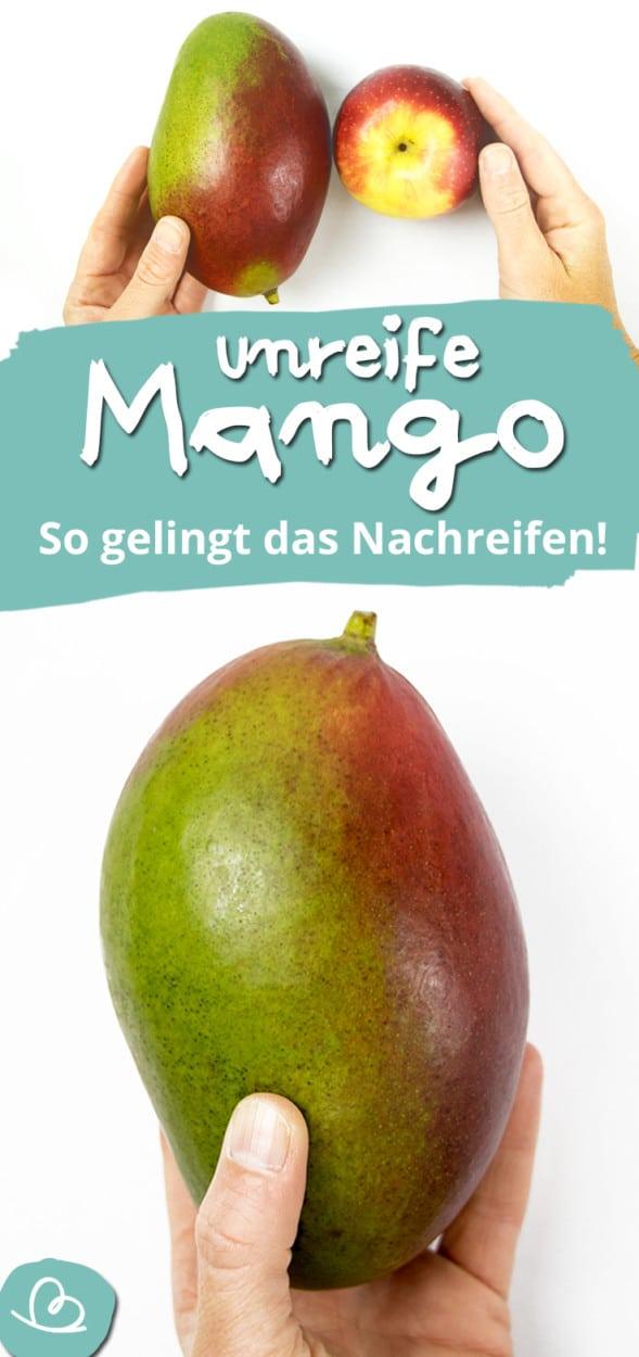 unreife Mango essen Pinterest Bild
