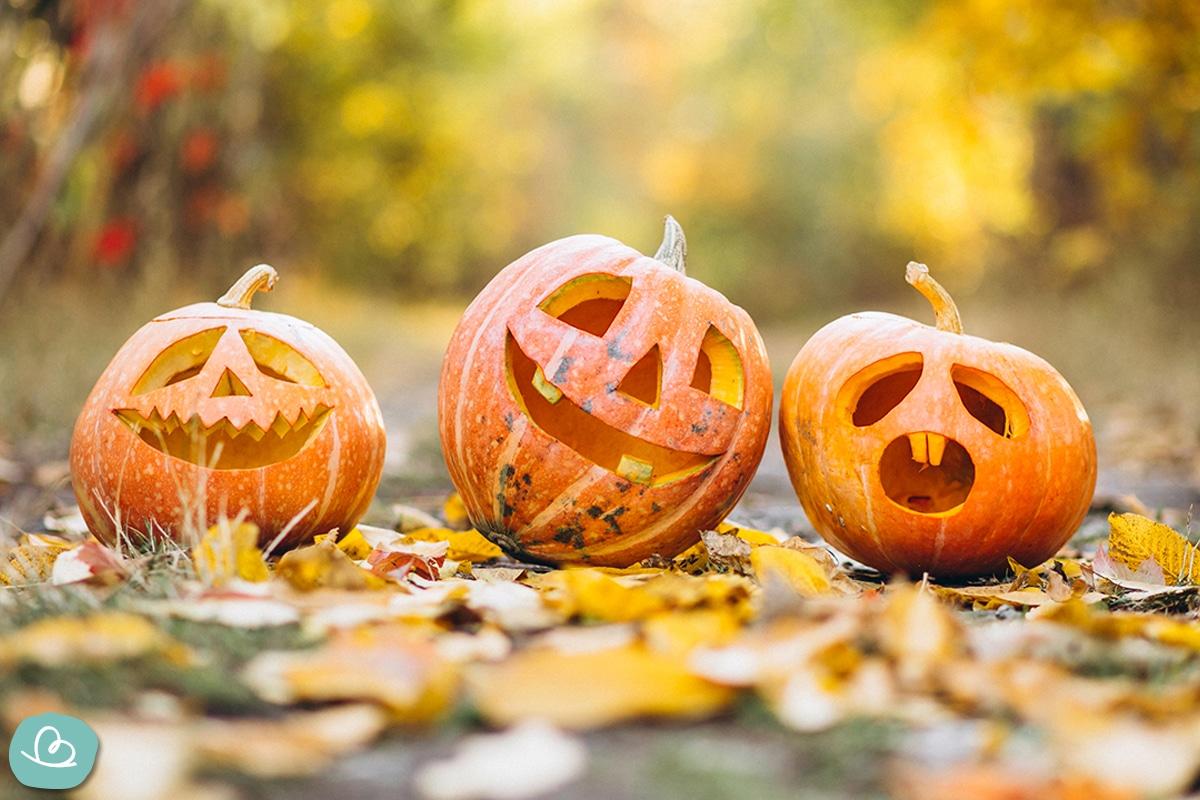 Die beste Sorte(n) zum Halloween-Kürbis schnitzen