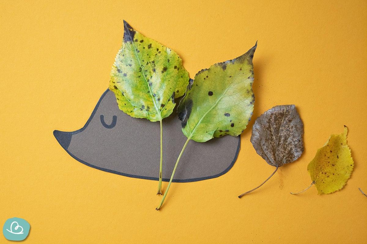 Blätter auf Igel kleben