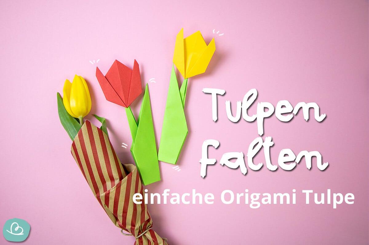 Tulpen falten