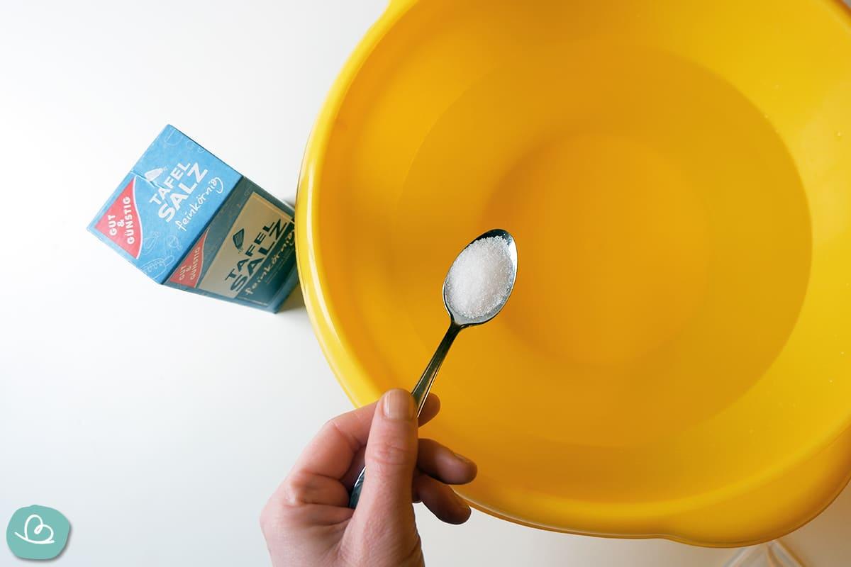 Ein Teelöffel Salz in eine gelbe Schüssel streuen.
