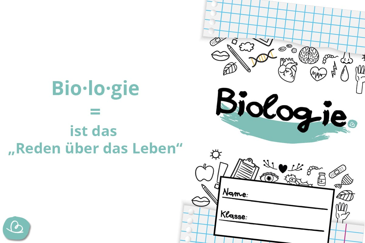 Biologiedeckblatt