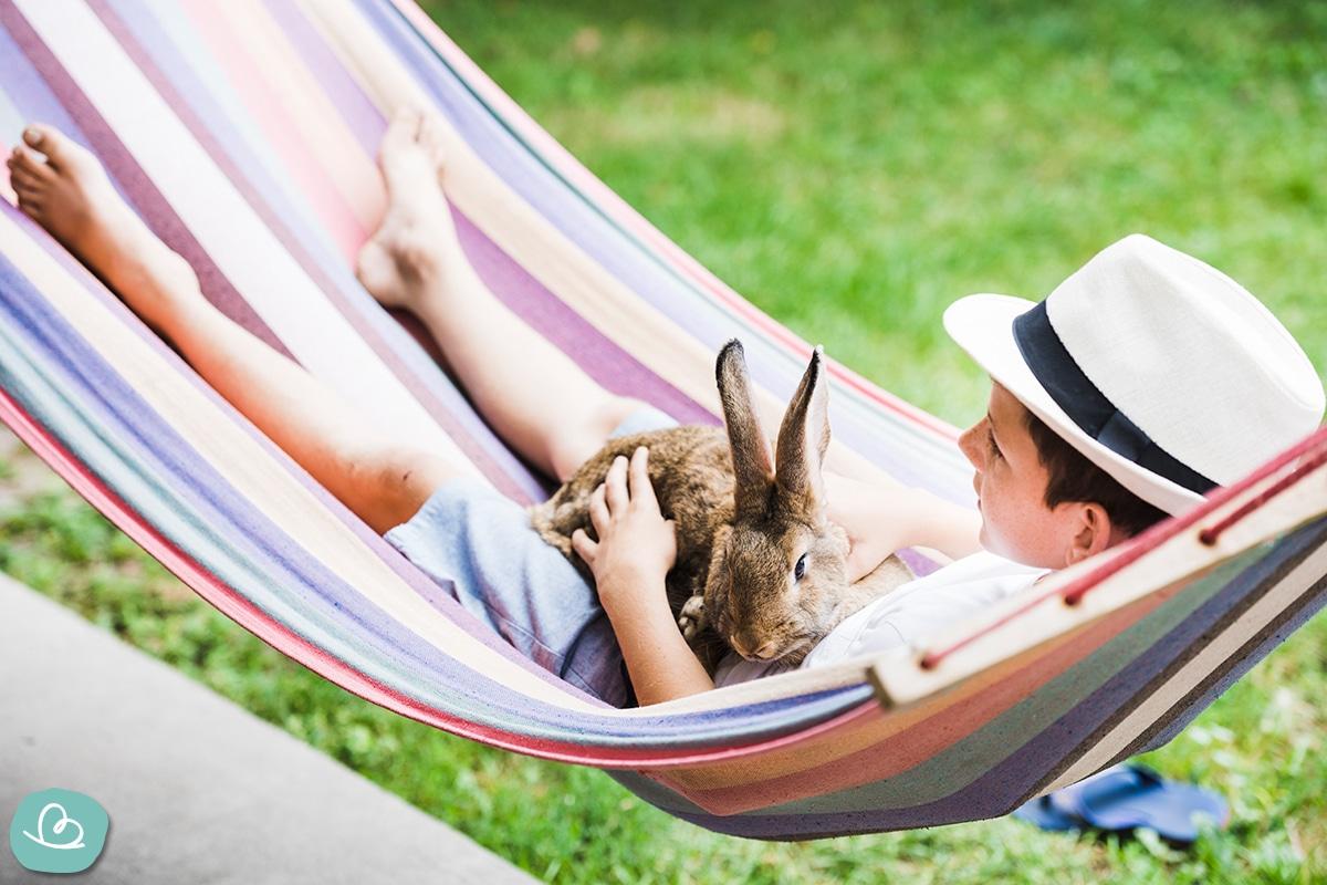 Junge liegt in der Hängematte und hat ein Kaninchen im Arm.